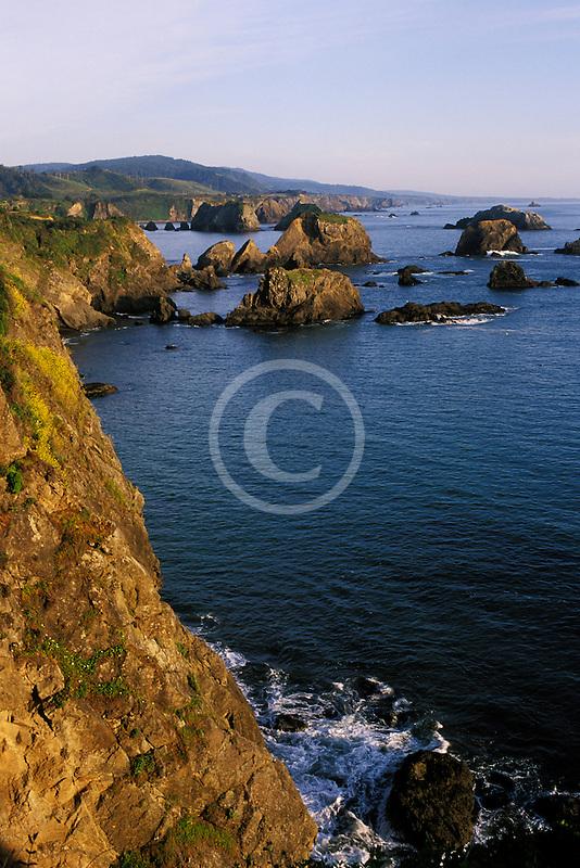 California, Mendocino County, Coastal bluffs near Elk