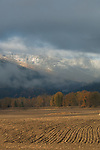 Idaho, Bonners Ferry.  Plowed fields in the Kootenai Valley in the fall looking toward the snow on the Selkirk mountains