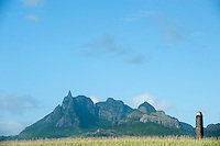 Mauritius. Stone chimney in sugar cane fields.