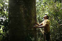 Small-scale logging, long a part of life in rural Indonesia, is now illegal. With few other options, many loggers continue on.