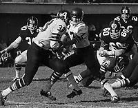Joe Theismann Toronto Argonauts Quarterback 1971. Copyright photograph Scott Grant