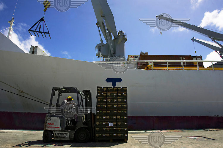 Fairtrade bananas are loaded onto a ship for export.