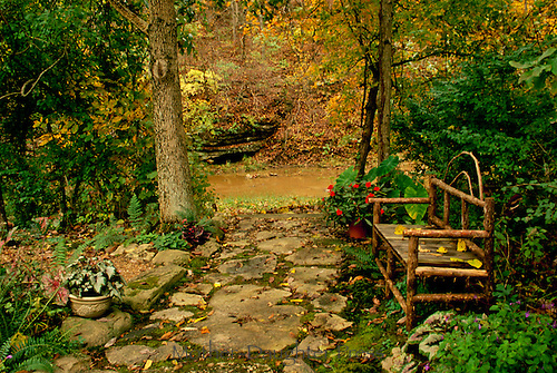 Beuatiful even in fall: Shade garden with handbuilt bench beside stream in autumn, series, Missouri USA
