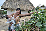 A woman picks beans outside her home in Las Flores, Ixcan, Guatemala.