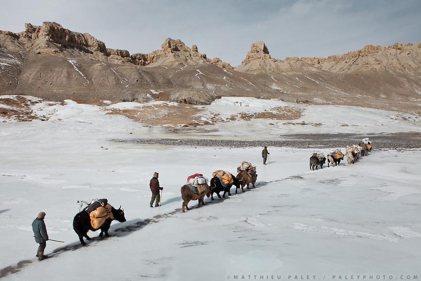 A yak caravan entering the Pamir plateau. Near Bozoi Gumbaz..Trekking to the Little Pamir with yak caravan over the frozen Wakhan river.