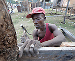 A man in the Haitian village of Dabonne builds a new temporary shelter to house his family, following the destruction of their home in a January 12 earthquake. He uses old lumber salvaged from the ruins of previous house.
