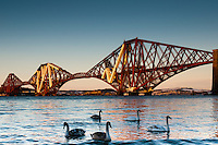 A (close to) sunset photo of the Forth Rail Bridge, crossing the Firth of Forth between Edinburgh and Fife. Snow can be seen on the mountains in Fife, across the Forth..The Forth Bridge is an instantly recognisable landmark associated with Scotland and Edinburgh in particular and might be nominated as one of the UNESCO World Heritage Sites in Scotland.  .Swans are seen on foreground.