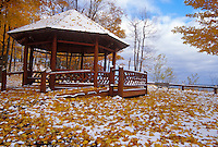 Maple leaves yellow with fall color surround the gazebo at Presque Isle Park in Marquette, Michigan in autumn.