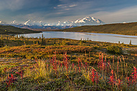 Mt McKinley and Wonder Lake, Denali National Park, Alaska.