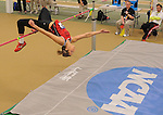 2014 MW DII Indoor Track