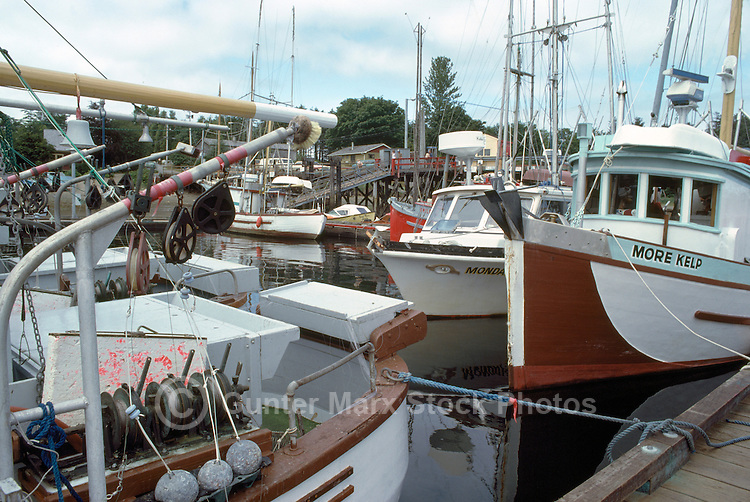Queen charlotte islands charlottes haida gwaii pictures for British columbia fishing license