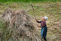 Roucas, Peneda Geres National Park, Portugal, June 2011. An old woman collects hay. Hiking up to the small alpine pastures and summer villages of the Roucas area. In the extreme North of Portugal, between the Atlantic Coast and the Spanish border are the mountains and valleys of Peneda Geres National Park. Walk along narrow shepherd trails or on the ancient cement of Roman roads. From lush river valleys to bare rocky mountain peaks.  Photo by Frits Meyst/Adventure4ever.com