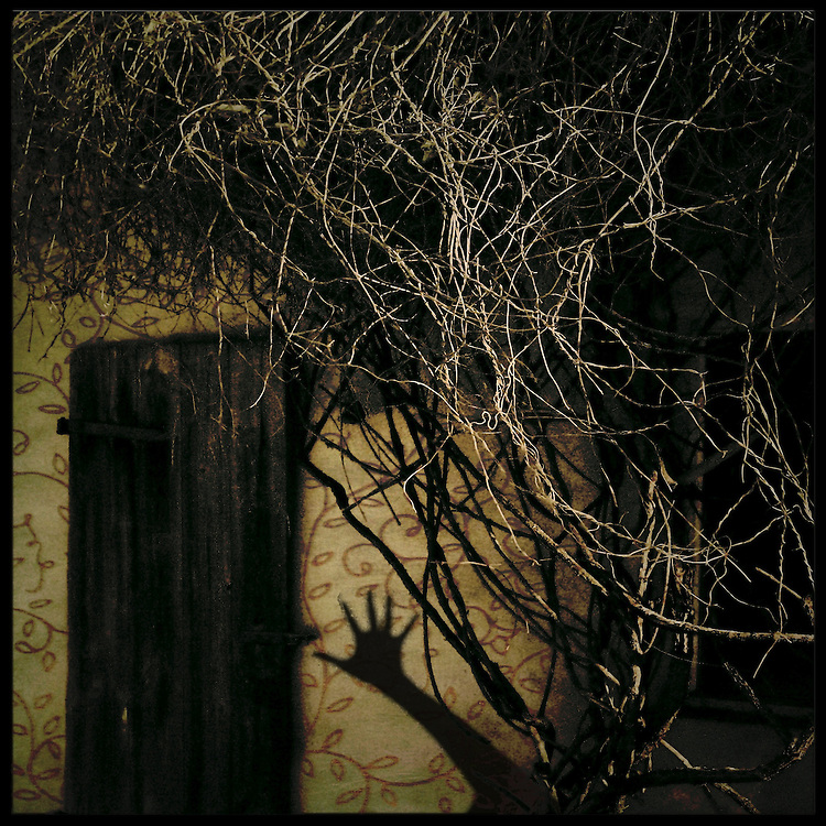 The shadow of a arm and hand on an outbuilding covered in vines