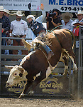 Jake Wade, from Almono, N.M.rides Little Johnny during the Xtreme Bull Riding Competition at the Kitsap County Fair and Stampede  held Aug. 26 to Aug. 30, 2009 in Silverdale, WA. Jim Bryant Photo. All Right Reserved. © 2009