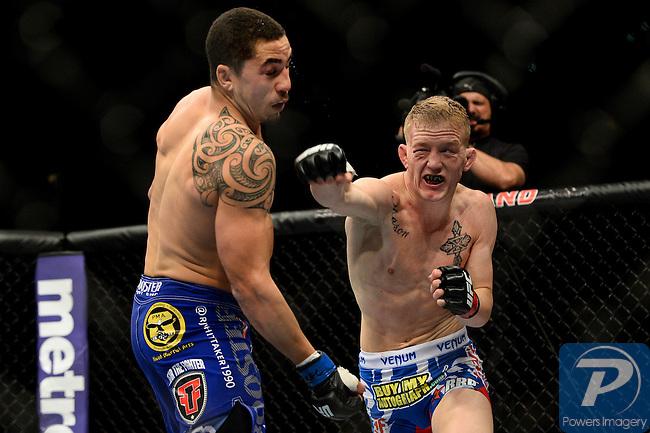 UFC160-AP61.jpg