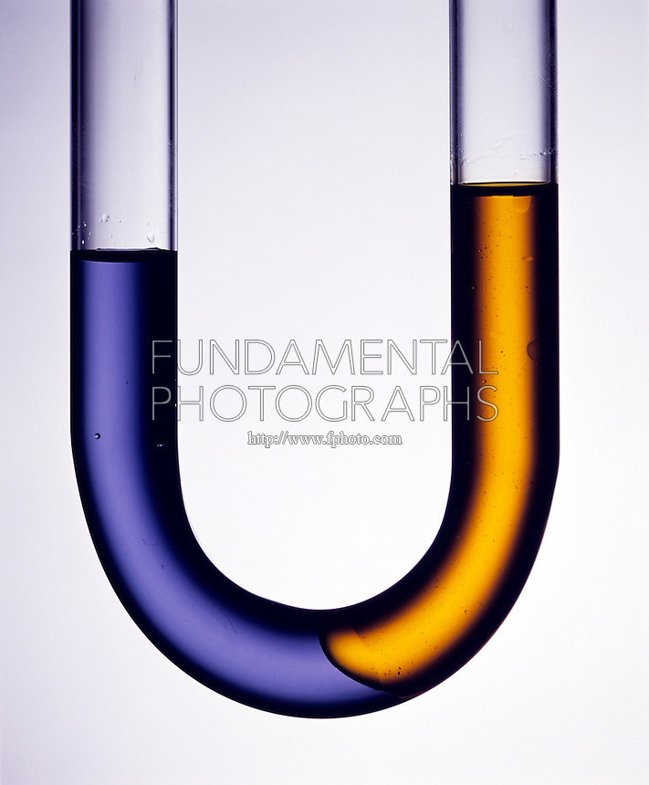 EQUILIBRIUM: OIL &amp; WATER IN U-TUBE Immiscibility<br />
