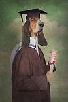 fantasy graduation scene where the student has the head of a dog