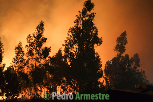 General view of a wildfire in Ribeira, near A Coruña on August 28, 2013. © Pedro ARMESTRE