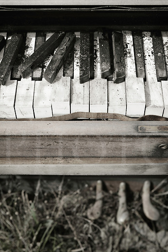 Piano keys close up, an abandoned and broken keyboard weathered to grunge sitting outside in the weather.