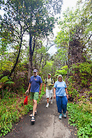 tourists, hiking rainforest trail under tree fern, Hapuu, Cibotium sp., and endemic Ohia Lehua, Metrosideros polymorpha, Kilauea, Hawaii Volcanoes National Park, Big Island, Hawaii, USA, MR