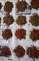 Asie/Malaisie/Bornéo/Sabah/Kota Kinabalu: Détail d'un étal de piments rouges sur le marché Tuarav