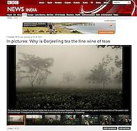 BBC, Darjeeling Tea.