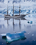 "Antarctica Bark ""Europa"""