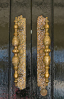 Fancy brass ornamental door handles.