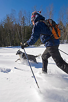 A backcountry skier and his dog move through powder lake effect snow while skiing at Harlow Lake near Marquette Michigan.<br />