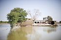 One month after the devastating monsoon rains caused huge floods in Pakistan, new areas are still affected and water still stands among fields and houses. Jamshoro, Pakistan, 2010