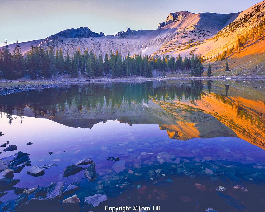 Wheeler Peak Reflection in Stella Lake, Great Basin National Park, Nevada