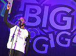 JUN 1 Girlguiding Big Gig - Loveable Rogues