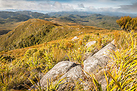 Morning views over endless valleys of Kahurangi, Kahurangi National Park, Nelson Region, South Island, New Zealand