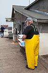 An fisherman at Carlson's, a 5th generation fishing company in the Leland Historic District (Fishtown), Leland, Michigan, MI, USA