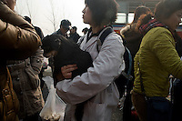 Volunteers carry sick and injured animals to Ha Wenjin's no-kill dog and cat rescue farm outside Nanjing, Jiangsu, China.