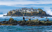 &quot;MONTEREY MARITIME MEETING&quot;<br />