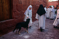 Nuns walk through an alley followed by a dog wandering in Santa Catalina Convent in Arequipa, Peru. Monasterio de Santa Catalina was built in 158. Among the 30 cloistered nuns, five novicias study five years to become a nun. The youngest nun is 15, the oldest is 98. <br /> Activities help the young girls adjust to the cloistered life. The nuns begin their day at Mass, walking through the convent that is later open to the public. Then the novicias have class and activities studying theology, music and the Bible. For their work, they embroider, make parsley soap, creams, cookies and iron. Older nuns make  the wafers for communion. <br /> Seven times during the day the nuns go to their chapel for chorus and pray. Contemplation is the most important thing in their lives. They never leave the premises without special permission to go to the doctor and to vote. The founder was supposed to have accepted girls from the finest of Spanish families. The nuns today take the traditional vow of poverty.