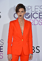 Ruby Rose at the 2017 People's Choice Awards at The Microsoft Theatre, L.A. Live, Los Angeles, USA 18th January  2017<br /> Picture: Paul Smith/Featureflash/SilverHub 0208 004 5359 sales@silverhubmedia.com