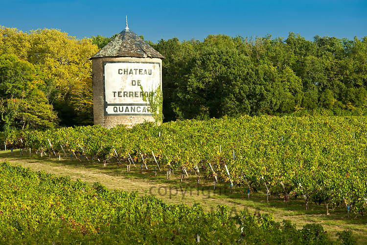 Chateau de Terrefort Quancard vineyard, Bordeaux, France