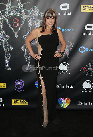 BEVERLY HILLS, CA - April 20: Cynthia Rothrock, At Artemis Women in Action Film Festival - Opening Night Gala At The Ahrya Fine Arts Theatre In California on April 20, 2017. Credit: FS/MediaPunch