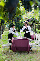 Two waitresses arranging the glassware on tables placed amongst the vineyards surrounding the Ristorante Arquade near Verona for an al fresco meal