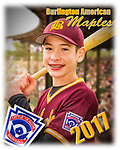 2017 Burlington American Maples
