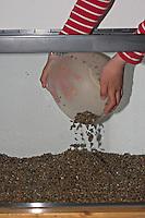 Kinder richten ein Aquarium ein, Schritt 2, Bodensubstrat, Kies wird in das Glasbecken gefüllt