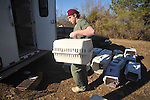 Veterinarian student Russ Drury takes one of Cynthia Daniels cats to a mobile spay/neuter unit near Oxford, Miss. on Thursday, January 6, 2011.