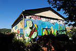 A mural on a farmer's barn against genetically modified (GM) crops shows a masked man injecting maize.