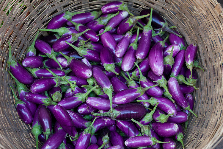 Fresh aubergines on sale at market stall in Varanasi, Benares, India