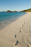Foot prints in the sand.Trunk Bay, St John.Virgin Islands National Park