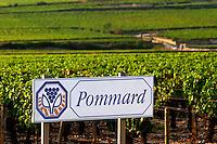 road sign vineyard pommard cote de beaune burgundy france