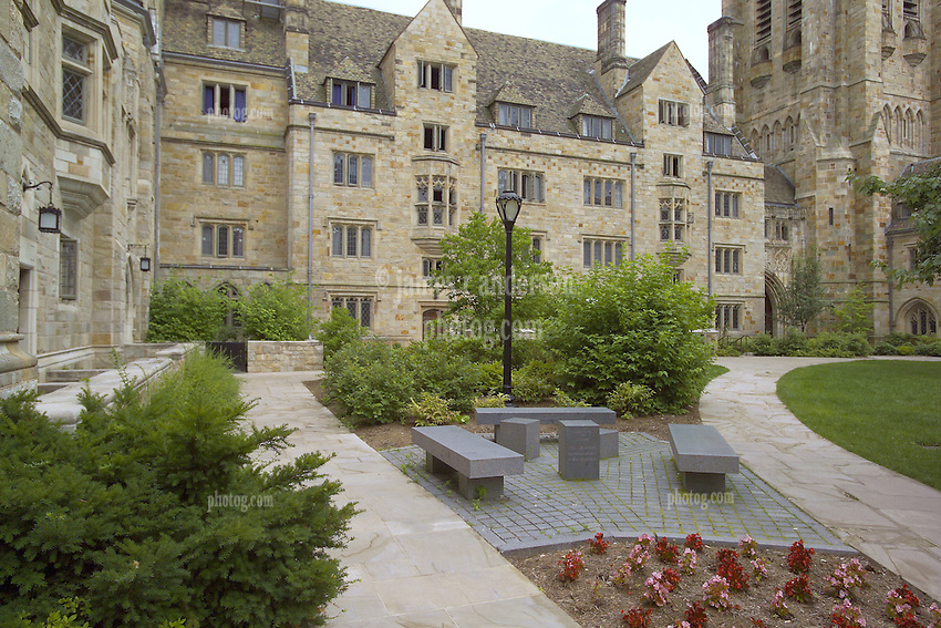 Yale from another college or