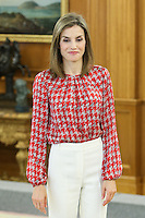 Queen Letizia during the audience with the executive board national spanish assoccition against canc